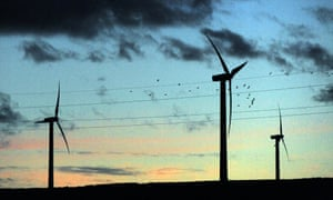A flock of birds flies past wind turbines in the evening light, at Scottish Power's Dun Law windfarm south of Edinburgh