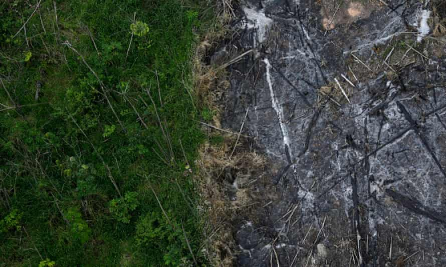 An area of slashed and burned Amazon rainforest next to a section of virgin forest in Brazil