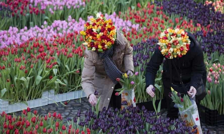 Dutch National Tulip Day in in Amsterdam