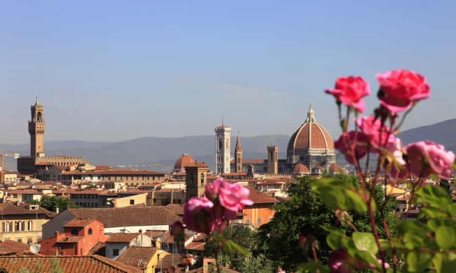 Bright pink roses against a blue sky with the red-tiled roofs of Florence and the cathedral in the background.