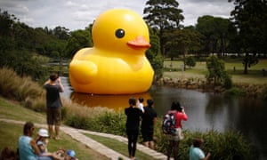 The giant inflatable Rubber Duck installation floats on the Parramatta River, as part of the 2014 Sydney Festival, in Western Sydney.