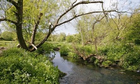 A stream running through the Tolkien trail, Moseley Bog, Birmingham