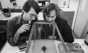 Richard Dawkins at Oxford in 1976, pictured right, studying insect behaviour with student Ted Burk.