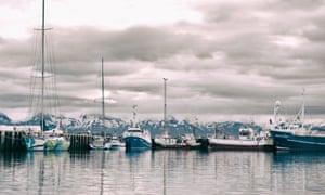 Fishing boats at anchor.