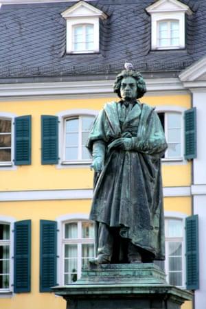 Ludwig van Beethoven and pigeon, Bonn, Germany