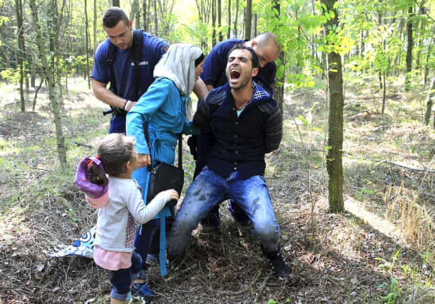 Hungarian policemen detain a Syrian refugee family after they entered Hungary at the border with Serbia, near Röszke. Photograph: Bernadett Szabo/Reuters.