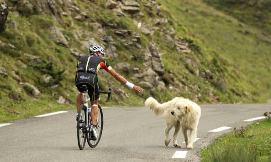 Haute Route Pyrenees Rider with dog