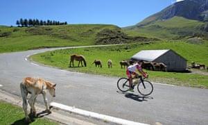 Haute Route descent with horses