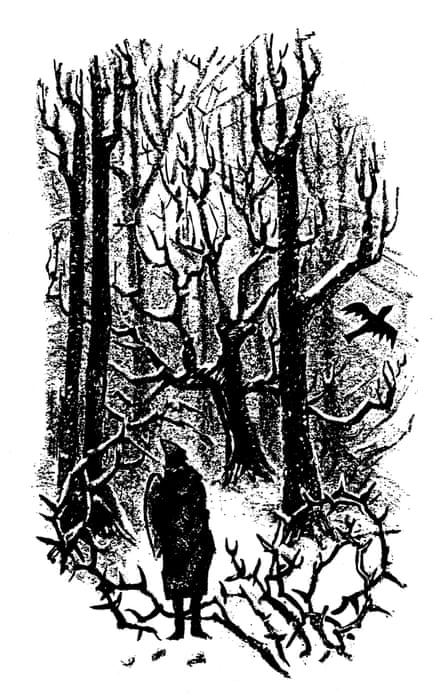From The Secrets of the Wild Wood.