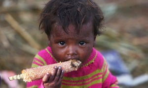 A child on the outskirts of Srinagar. The Global Nutrition report indicates a downward trend in child malnutrition in India, but says the battle is far from won.