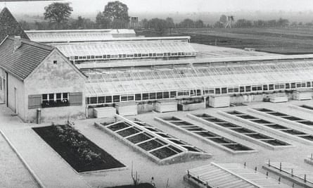 The greenhouses in the 'herb garden' at Dachau in 1945.