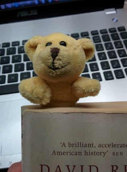 bear bookmark