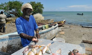 A fisherman cleans his catch