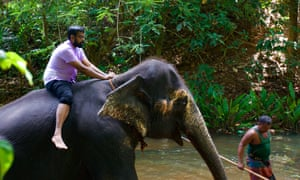 Trunk with power: Ranganathan takes the scenic route.