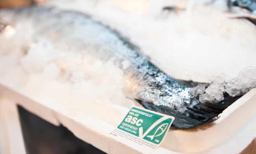 ASC-certified salmon