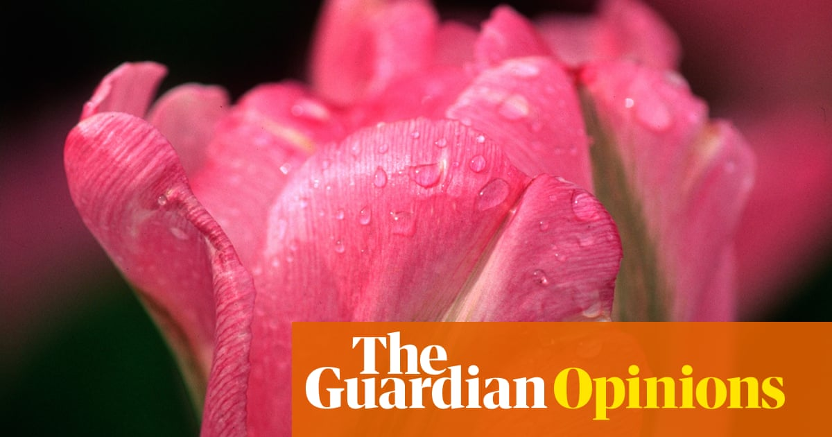 I don't call myself bisexual – I let my stories tell themselves