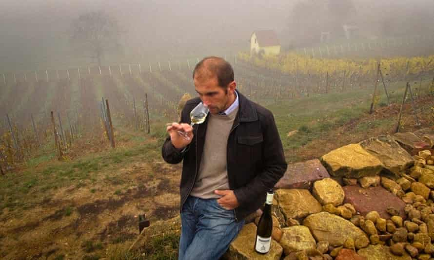 Christian Beyer at the Emile Beyer vineyard