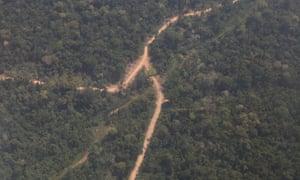 Peru logging