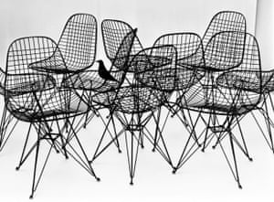 Wire chairs by Ray and Charles Eames