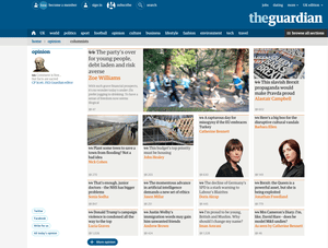 Screengrab of Guardian Opinion section