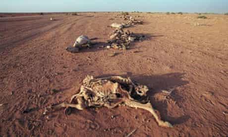 Katine drought ethiopia