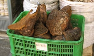 Basket of rhino horn for sale
