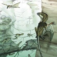Dinosaurs: pterosaur