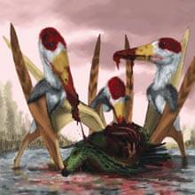 Dinosaurs: pterosaur Istiodactylus