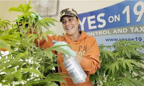 California marijuana Proposition 19, 2010