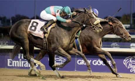 Zenyatta racing in Louisville, Kentucky