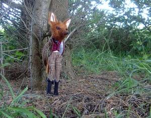 Craftidermy: Mr Fox, by Emma Cocker