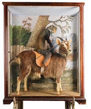 Potters Museum : Monkey riding a goat