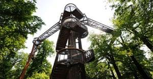 The new aerial walkway at Kew Gardens
