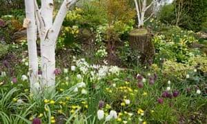 Anatomy Of A Garden A Woodland Garden Life And Style