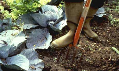Organic gardeners rely on nature to keep soil healthy
