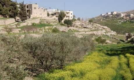 Bustan Quraaqa, a permaculture farm in the West Bank town of of Beit Sahour