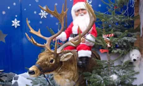 A Christmas display at a garden centre