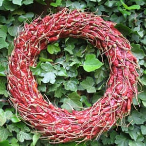 Christmas wreaths: Chilli wreath