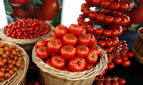 A display of tomatoes