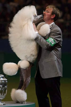 Crufts winners: Best In Show Announced At Crufts
