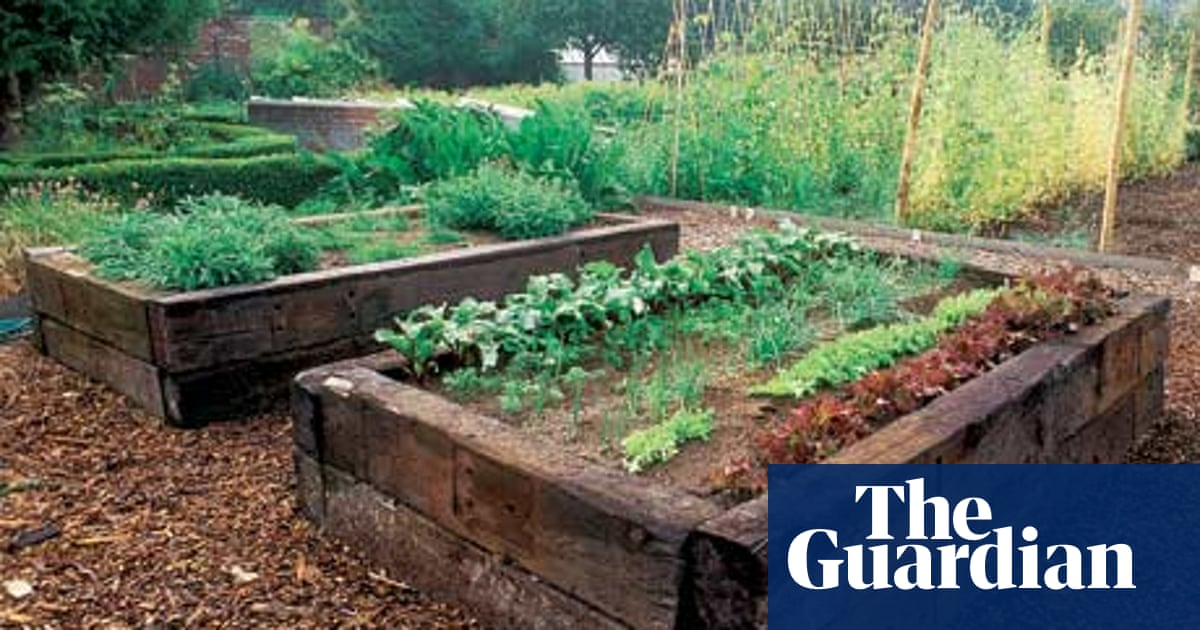 Productive Raised Beds Take A Lot Of Planning Life And Style