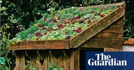 Lia Leendertz On Sedum Roofs And Tiny Gardens Life And