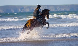 Riding a horse in the sea