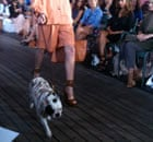 Canine chic at the Mulberry show, New York fashion week