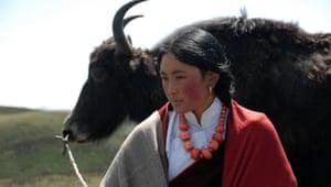 Drylands fashion: Drylands fashion: woman with yak, Norlha