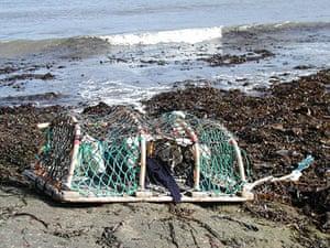 Knitting: Lobster creel
