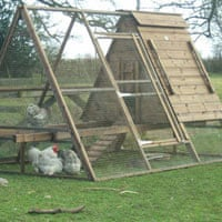 The Dell chicken ark from Smiths Sectional Buildings