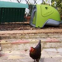 An Eglu chicken coop by Omlet