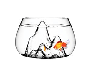 Xmas pets above 20: Fishscape glass bowl