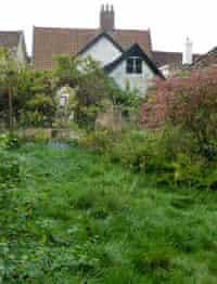 Catharine howard's garden
